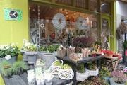 Botanica Bloemenspeciaalzaak Fleurop